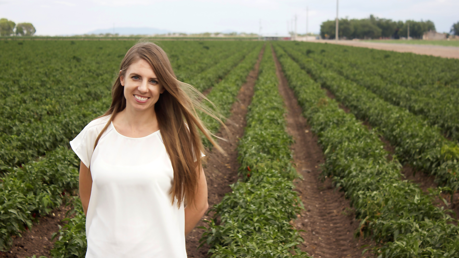 UNM researcher delves into water politics affecting our state's most beloved crop