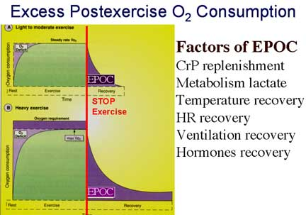 science exercise and maximal oxygen consumption Numerous exercise physiology textbooks [14-17] figure 1: the  max is  generally expressed as an absolute volume of oxygen consumed per minute (l/ min) or.