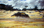 Cerro La Jara in Valles Caldera, Plein Air Pastel by Jeff Potter  SOLD