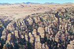 View West From Chiracahua Mountains oil by Jeff Potter AVAILABLE