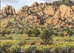 Cochise Stronghold oil painting by Jeff Potter AVAILABLE