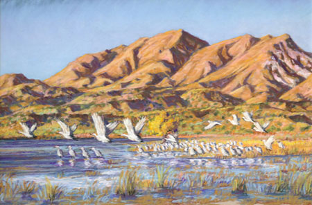 Cranes Taking Flight Under Chupadura Peak pastel by Jeff Potter AVAILABLE
