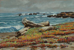 Northen California Beach plein air pastel by Jeff Potter AVAILABLE