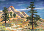 Ponderosa Pines and Sandstone Bluffs near Boulder, Utah pastel by Jeff Potter AVAILABLE