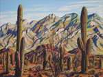 Saguaro Foothill View of Santa Catalina Mountains pastel by Jeff Potter AVAILABLE