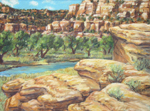 San Juan River from Simon Point - pastel done en plein air by Jeff Potter SOLD
